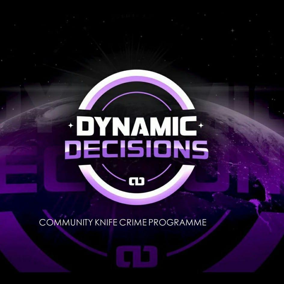Dynamic Decisions
